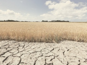 Kiedy suszowe za 2019 rok? Jeszcze trzeba poczekać...