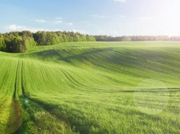Ekoschematy - nowa płatność bezpośrednia