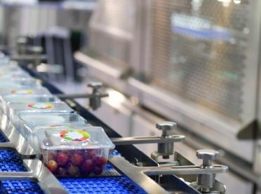 Brytyjczycy mają plan na zmiany sektora rolno-spożywczego