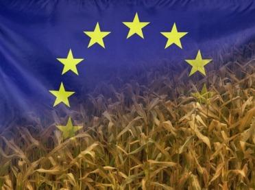 Komisja Europejska pyta o WPR