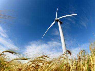 Czy infradźwięki z elektrowni wiatrowych szkodzą zdrowiu?