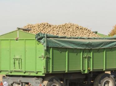 GUS: w czerwcu w skupie tańsza pszenica i ziemniaki