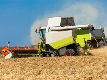 Żniwa w pełni - uwaga na pył rolniczy!