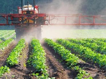 Coraz mniej substancji czynnych do ochrony roślin