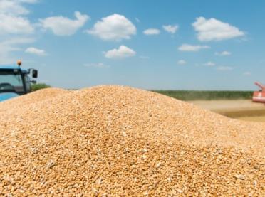 Żniwa dobiegają końca – czy rolnicy są zadowoleni?