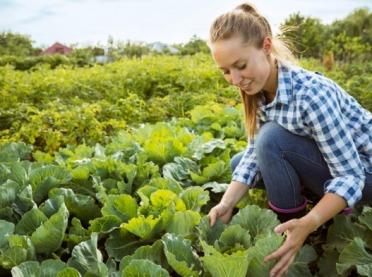Kobiety agrobiznesu mają moc