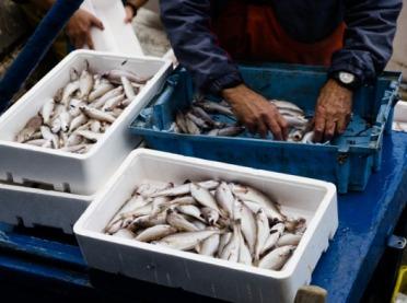 ARiMR dofinansuje inwestycje w bezpieczeństwo i zdrowie rybaków