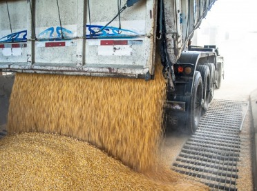 Ceny zbóż nie rekompensują kosztów produkcji