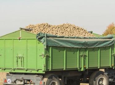 Ile ziemniaków zbierzemy w tym roku?