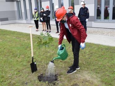 """""""Dzień drzewa"""" w Grupie Azoty S.A."""