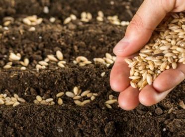 Trzeba opłacić odstępstwo rolne