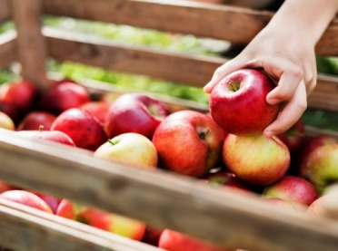PKP ma pociąg do jabłek!