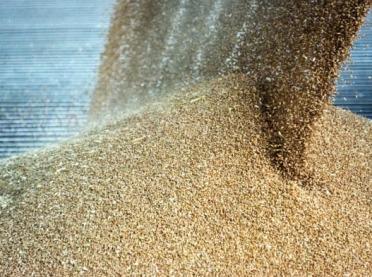 Prognozy FAO: mocny rynek zbóż