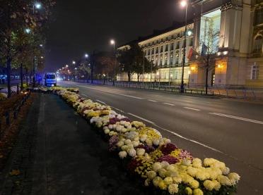 Będzie strajk producentów kwiatów i pozew zbiorowy?
