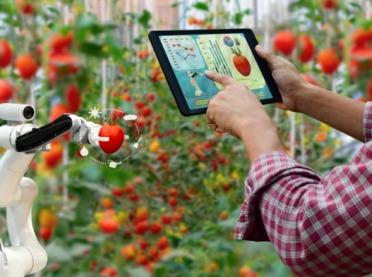100 mln zł dla firm pracujących nad nowymi technologiami w rolnictwie