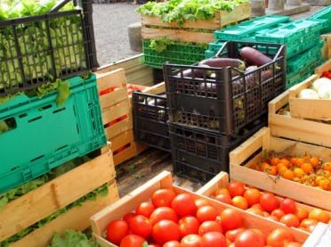 Nieuczciwe praktyki handlowe w łańcuchu dostaw żywności – wypełnij ankietę