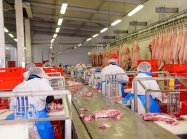 Rynek żywca wieprzowego bliski załamania?